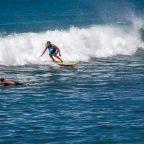 Hawaii 🌺 Woche 1 – Ohau 🏝☀️😎