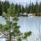 Trailrun zum Schachensee 🏃🏻♂️🏔